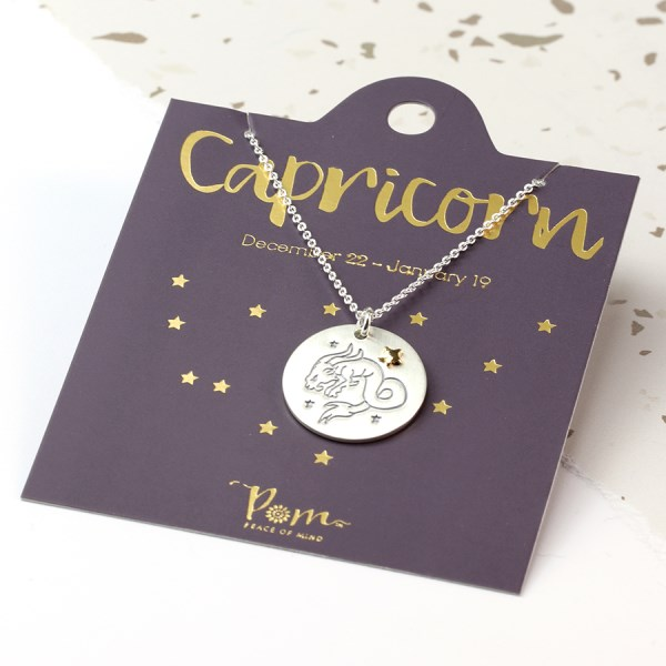 Silver plated Capricorn zodiac necklace with a golden star | Image 1