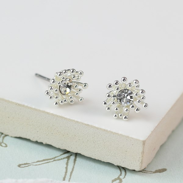 Silver plated crystal earrings with tiny bead clusters | Image 1