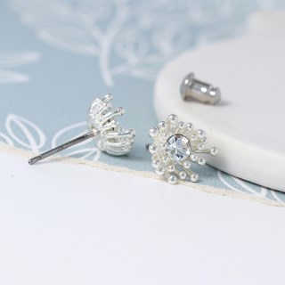 Silver plated crystal earrings with tiny bead clusters | Image 3